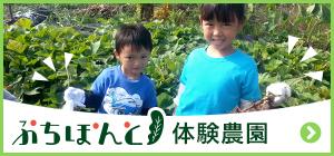 ぷちぽんと体験農園