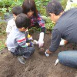 親子体験農業